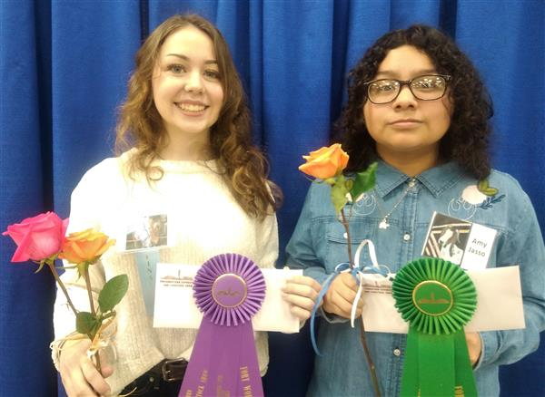 AHS Students in FWSSR Art Show